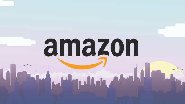 ફ્લિપકાર્ટ અને એમેઝોન ની 'ઇન્સ્ટન્ટ ક્રેડિટ ઓફર કઈ રીતે કામ કરે છે