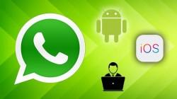 Whatsapp ના નવા ટોચના પિચર્સ કેજે એન્ડ્રોઇડ આઇઓએસ અને વેબ યુઝર્સ માટે આવી રહ્યા છે
